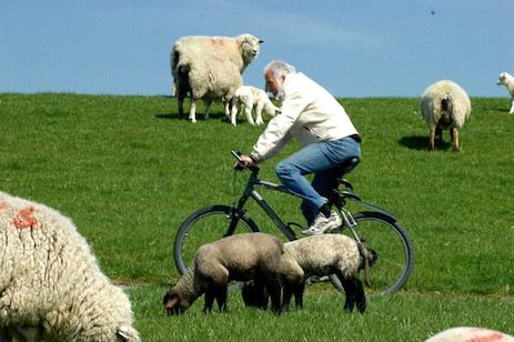 Fahrradtour ums Rantum Becken